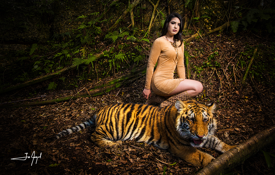 Quince-tiger-photoshoot-2
